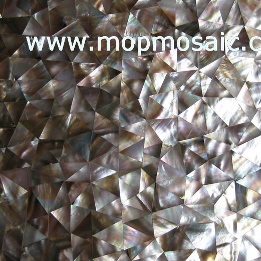 Triangle brownlip shell tiles
