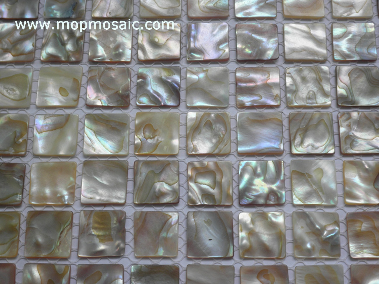Mother of pearl mosaic(Rianbow dapple shell mosaic)