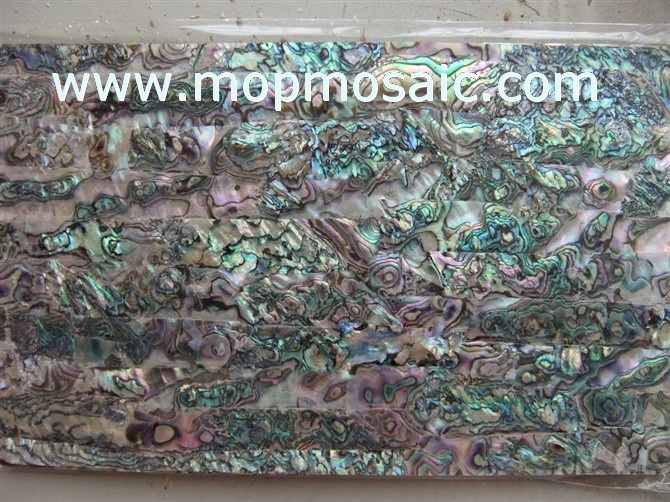 Mexican abalone shell laminate
