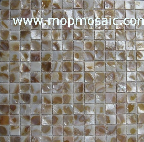 Dapple color shell mosaic